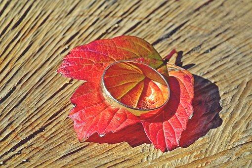 Wedding Ring, Leaf, Red, Wood, Autumn, Viburnum