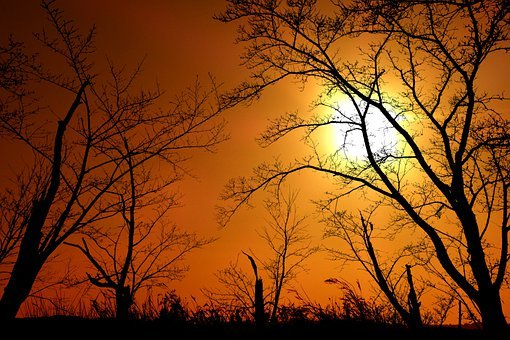 Sunset, Landscape, Nature, Sky, Orange, Evening