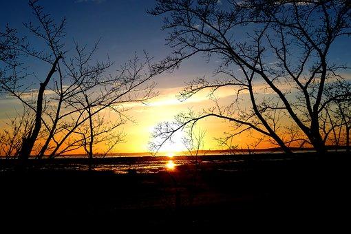 Sunset, Nature, Trees, Sea, Landscape, Sky, Blue