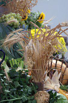 Cereals, Spike, Thanksgiving, Grain, Wheat, Agriculture