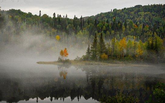 Landscape, Nature, Fog, Trees, Colors, Fall, Lake