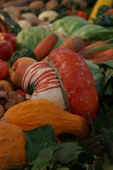 Thanksgiving, Food, Vegetables, Harvest, Agriculture