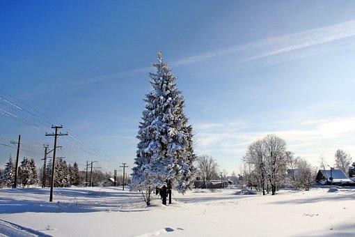 Russian Winter, Winter, Zimushka, Russia, Beauty, Snow