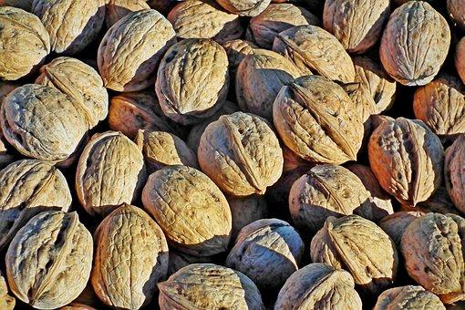 Nuts, Italian, Food, Cover, Garden, Fruit, Closeup