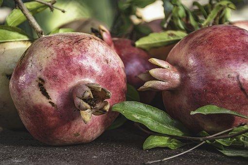 Conversation, Pomegranates, Leaves, Fruit, Delicious