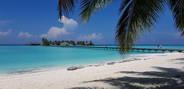 Maldives, Sand, Sea, Rest, Sea Sand, Palm Trees