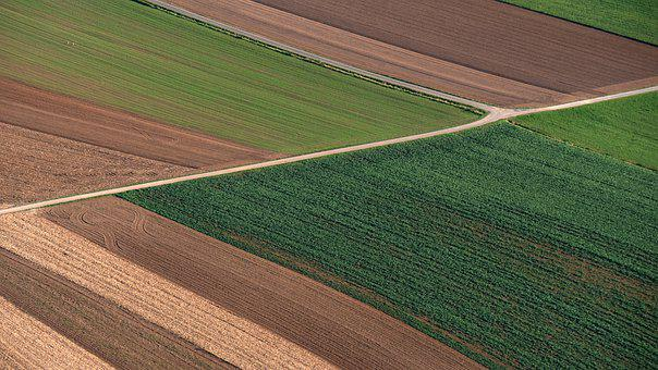 Arable Land, Fields, Agriculture, Bird's Eye View