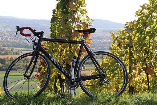 Autumn, Vineyards, Bike, Tour, Canyon, Road Bike