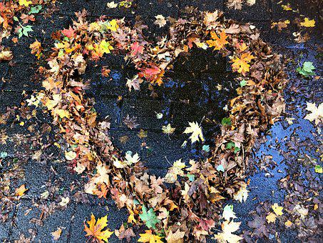 Heart, Leaves, Love, Fall Color, Nature, Rain, Wet