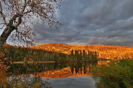 Landscape, Nature, Clouds, Trees, Birch, Fir, Mountain