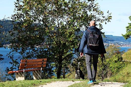 Hiking, Lake Constance, Tourism, Human, Man, Dog, View