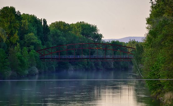 City, Bridge, Nature, River, Water, Trees, Germany, Fog