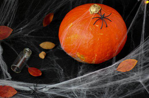Pumpkin, Autumn, Halloween, Harvest, Vegetables, Orange