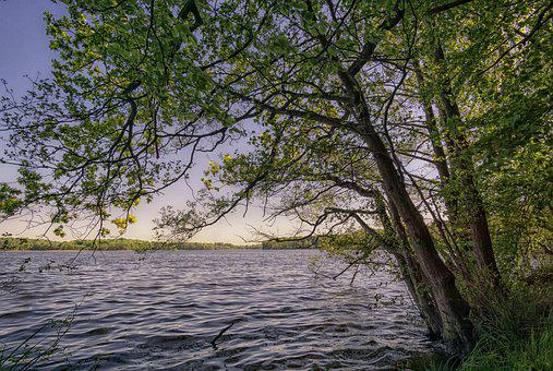 Lake, Nature, Water, Landscape, Waters, Sky, Summer