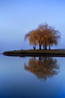 Lake, Mood, Sunrise, Fog, Mist, Water, Nature
