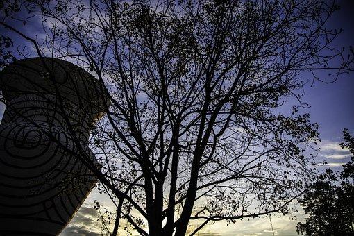 Autumn, Sunrise, Tree, Landscape, Nature, Mood, Morning