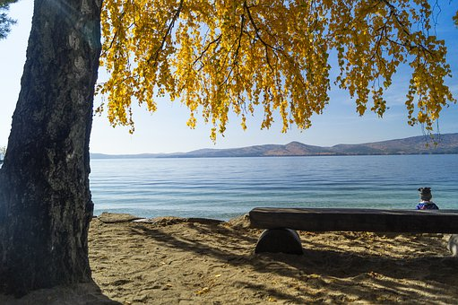 Lake, Lake Turgoyak, Autumn, Child, Tree