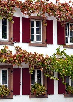 Window, Facade, Wood, Vines, Winegrower's House