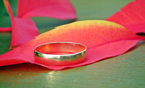 Leaf, Colored, Autumn, Wedding Ring, Gold, Nature