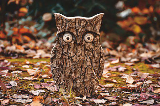 Owl, Tree Bark, Animal, Autumn, Fall Leaves, Eagle Owl