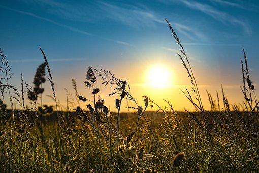 Sunset, Field, Sky, Landscape, Meadow, Nature, Clouds