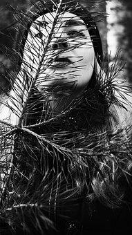 Girl, Black And White, Model, Portrait, Woman, Beauty