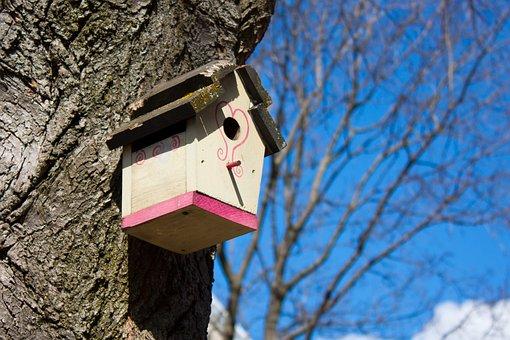 Birdhouse, House, Tree, Pink, White, Wood, Birds