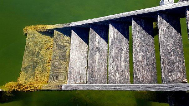Jetty, Water, Lake, Moss, Stairs, Wood