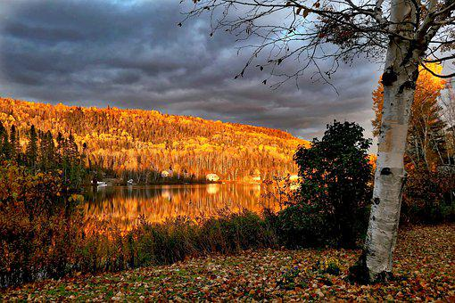 Landscape, Nature, Fall, Clouds, Trees, Birch, Mountain