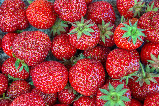 Strawberries, Fresh, Harvested, Fruits, Red