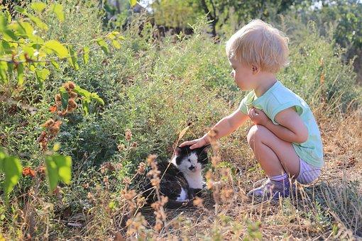 Kids, Joy, Baby, Cat, Iron, Delight, Weasel, Animal