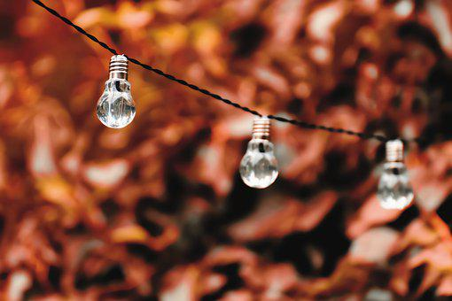 Light Bulb, Energy, Nature, Environment, Ecology, Light