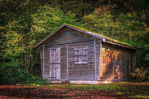 Hut, Forest, Wood, Nature, Landscape, House, Trees