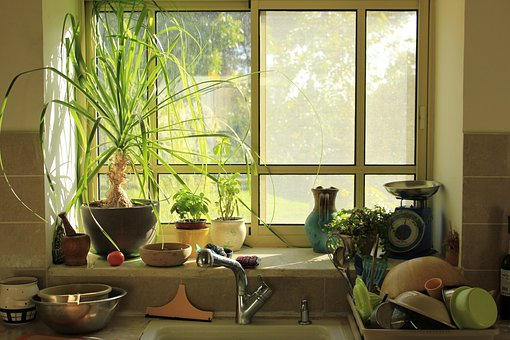 Window, Kitchen, Light, Morning, Interior, Cooking