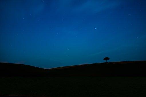 Minimalist, Tree, Landscape, Silhouette, Nature, Shadow