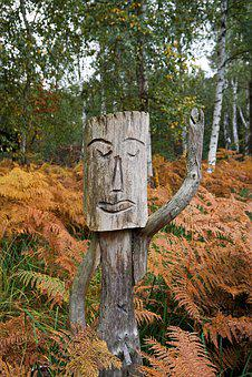 Sculpture, Wood, Autumn, Forest, Nature, Fern, Walk