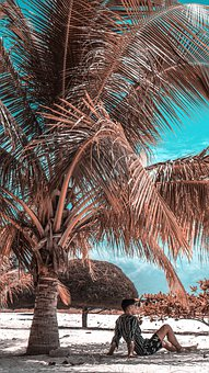 Travel, Nature, Chill, Landscape, Ocean, Water, Summer