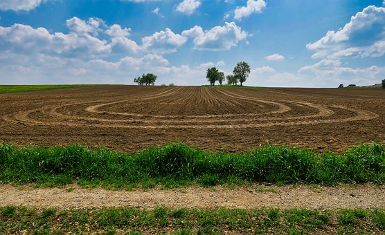 Arable, Sky, Tractor Track