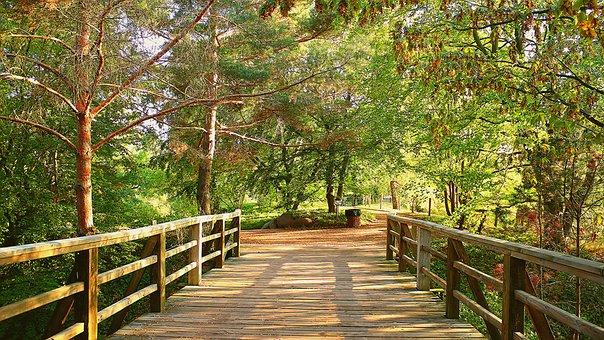 Britz Garden, Park, Nature, New Way, Path, Hiking, Hike