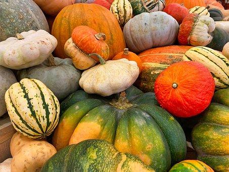 Pumpkin, Halloween, Autumn, October, Decoration
