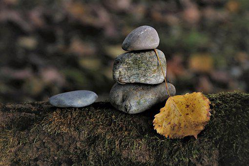 Pebbles, In The Fall, Dead Tree, Oct, Moss