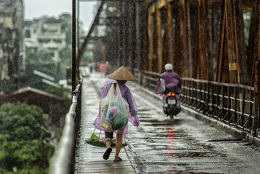 Season, Bridge, Wet, People