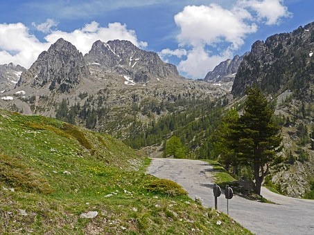 Alps Summer, Maritime Alps, South Of France, June