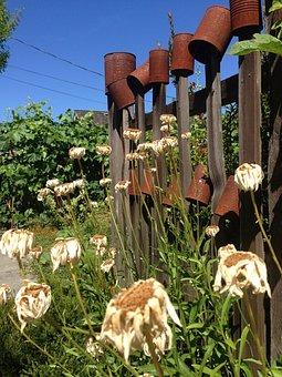 Cans, Flowers, Design, Vintage, Floral, Green, Garden