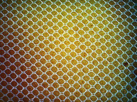 Sponge, Yellow, Close, Up, Gold, Closeup, Isolated