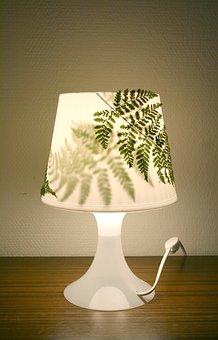 Lamp, Fern, Design, Plant Lamp, Furniture