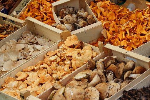 Mushrooms, Chanterelles, Market, Marketplace