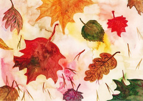 Leaf, Maple Leaves, Red Leaf, Autumn Leaf