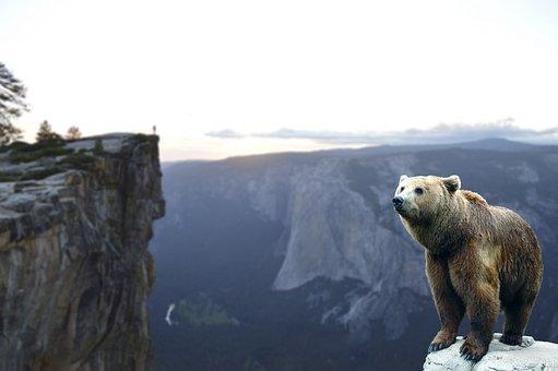 Bear, Mountain, Wait, Landscape, Nature, Sky, Adventure