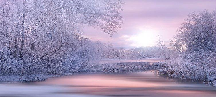 Nature, Landscape, Winter, The Winter's Tale, Snow